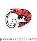 shrimp doodle 18974779
