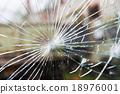 broken glass with cracks 18976001