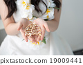 wedding, resort, resorts 19009441