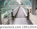 Walkways at the airport for passengers 19012034