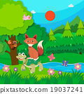 animal, fox, turtle 19037241