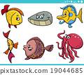 fish sea life 19044685