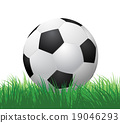 ball, football, grass 19046293