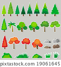 plant, green, pine 19061645