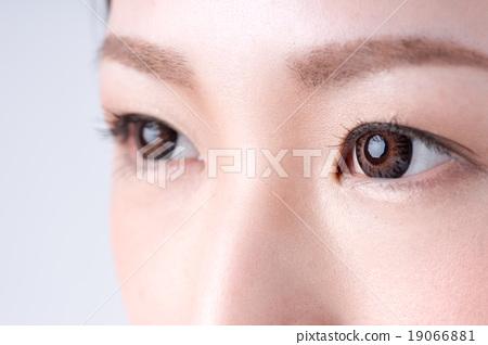 瞳孔 19066881