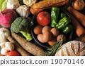 食品 原料 食材 19070146