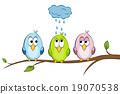 funny birds 19070538