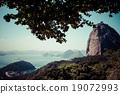 Rio de Janeiro, Brazil 19072993