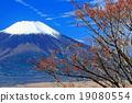 富士山 麻由美 留白 19080554