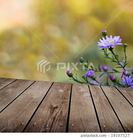 autumn theme and empty wooden deck table 19107527
