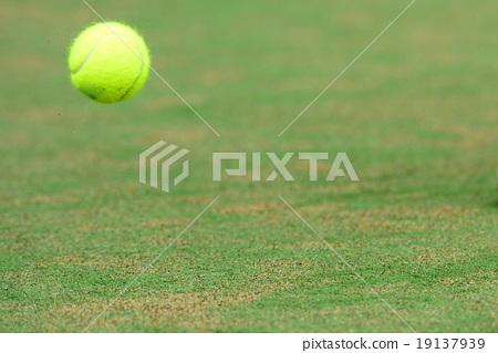 테니스 19137939