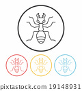 insect, icon, vector 19148931