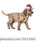 Labrador Retriever 19151045