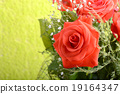 Red roses bouquet, flowers bouquet 19164347