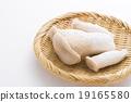 杏鮑菇 收穫 蔬菜 19165580