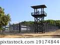 Prison wall 19174844