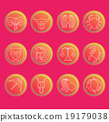 Zodiac signs. Flat thin set of simple zodiac icons 19179038
