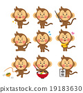 猴子 猴 猴年 19183630