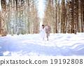 wedding, bride, forest 19192808