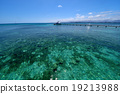 海洋 海 蓝色的水 19213988