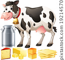 cow dairy product 19214570