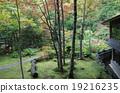 日本園林 登別 紅葉 19216235