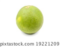 Green pomelo citrus fruit isolated on white 19221209