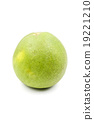 Green pomelo citrus fruit isolated on white 19221210