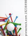 golf ball and tee 19236498