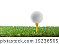 golf ball on tee 19236505