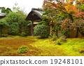 京都·金溪寺 19248101