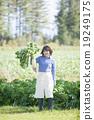 農業 農作 農事 19249175