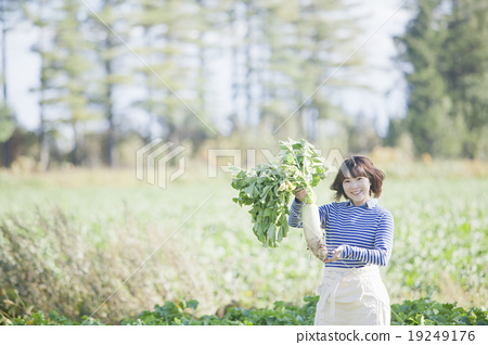 Singles in agriculture women