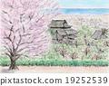 벚꽃과 사원 19252539