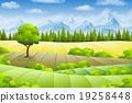 夏天 夏 树木 19258448