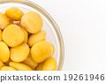 魯冰花 羽扇豆 豆 19261946