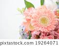 插花藝術 花朵 花 19264071
