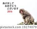 明信片模板 新年贺卡 贺年片 19274079