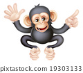 monkey, pointing, vector 19303133
