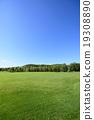 푸른 하늘과 초록의 광장 19308890