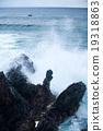 Easter Island rocky coast. 19318863