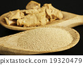 baking ingredient yeast powder and fresh yeast 19320479