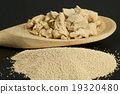 baking ingredient yeast powder and fresh yeast 19320480