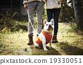 寵物 寵物狗 狗狗 19330051