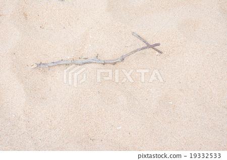 molder branch on sand 19332533