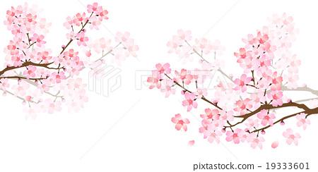 벚꽃 봄 꽃 배경 19333601
