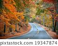 Autumn road 19347874