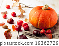 Pumpkin with wild apples, chestnuts Halloween 19362729