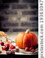 Pumpkin with wild apples, chestnuts Halloween 19363047