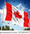 flag waving illustration 19380447